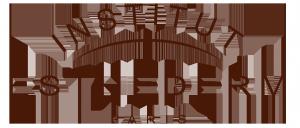 Logo Esthederm2